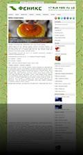 Интернет-магазин «Феникс»
